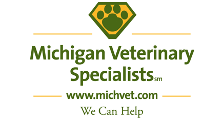 Michigan Veterinary Specialists
